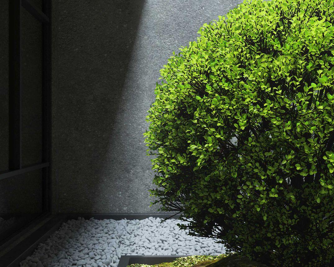 GR_Natural Light