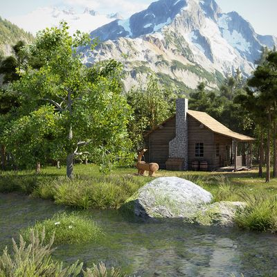A Cabin In The Nature