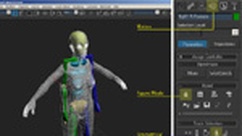 Skinning Di Un Personaggio In 3d Studio Max