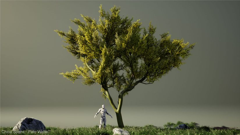 Set di alberi 3D da scaricare gratuitamente