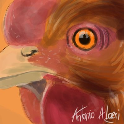 Gallo - SpeedPainting