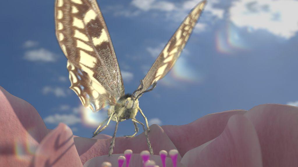 butterfly CG