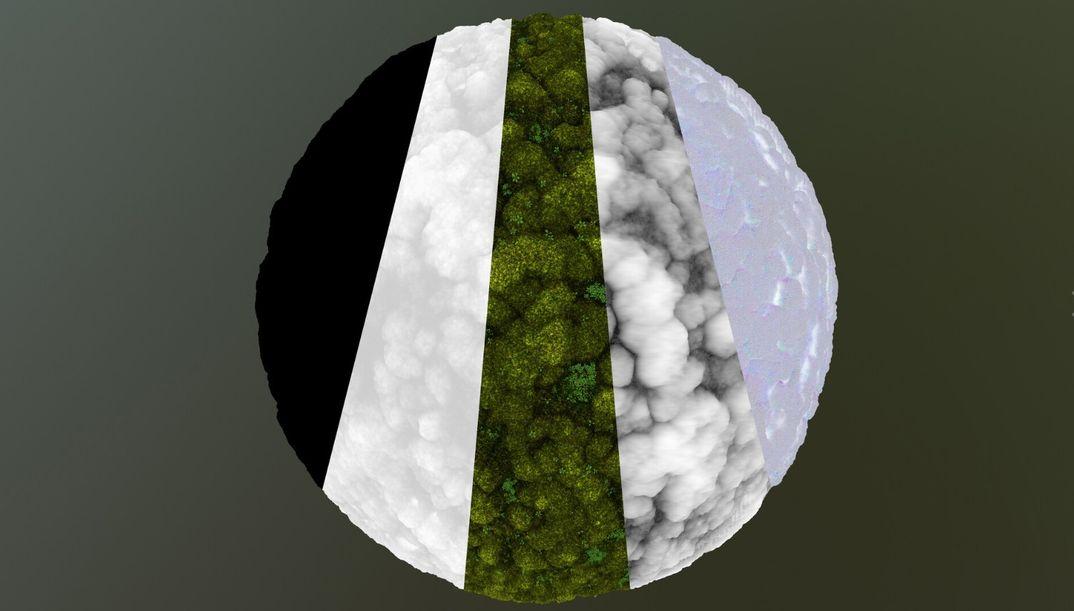 Substance Designer Muschio Studio - completamente procedurale