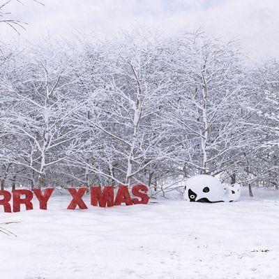 WHALE CHRISTMAS 2015