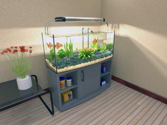 acquarium