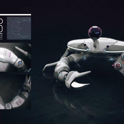 RoboCrab