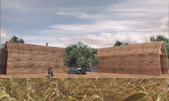 terrace in wheat