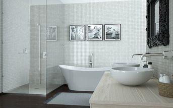 Bathroom 1.0