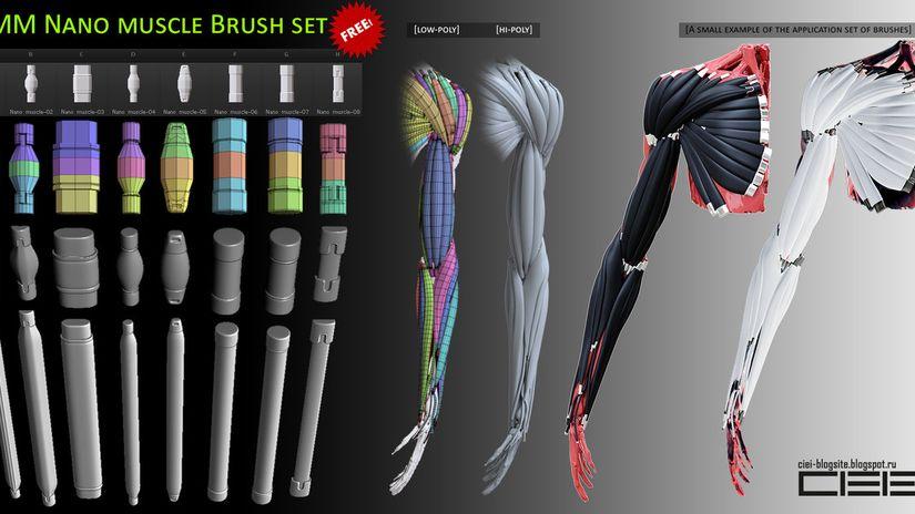 Set di muscoli bionici per ZBrush