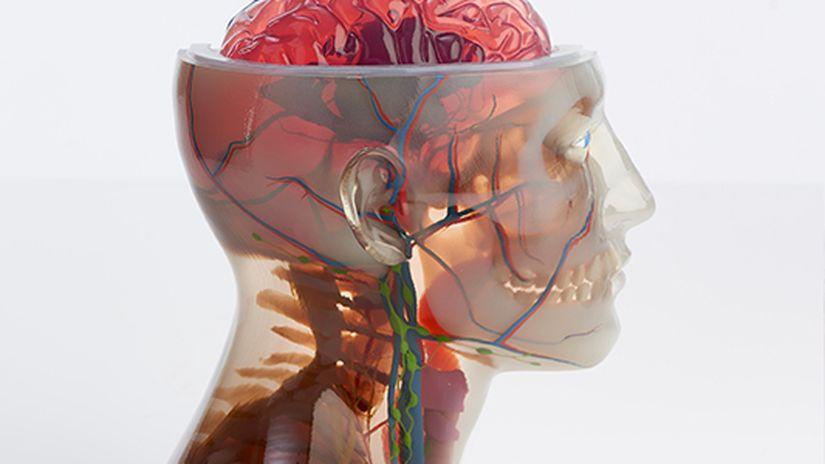 UDINE 3D - Il ruolo della modellazione e della stampa 3D in medicina