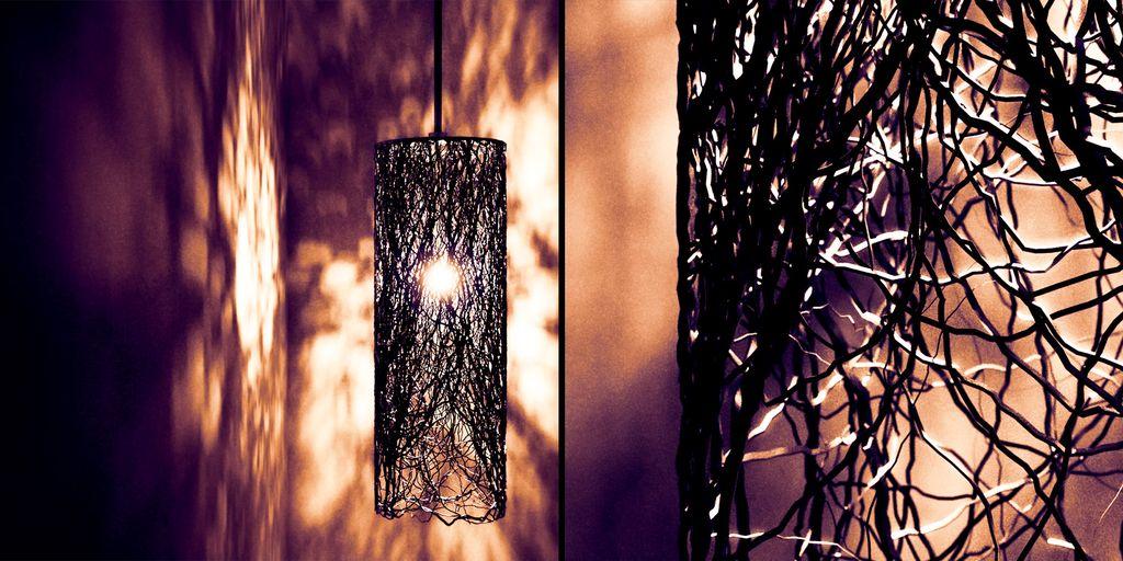 fdv_roots.jpg