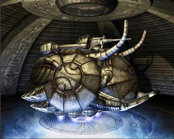 Bug Tank
