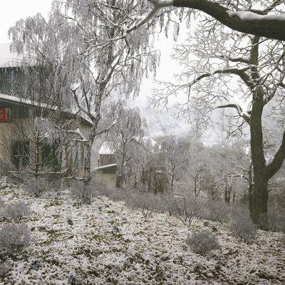 snow 02!