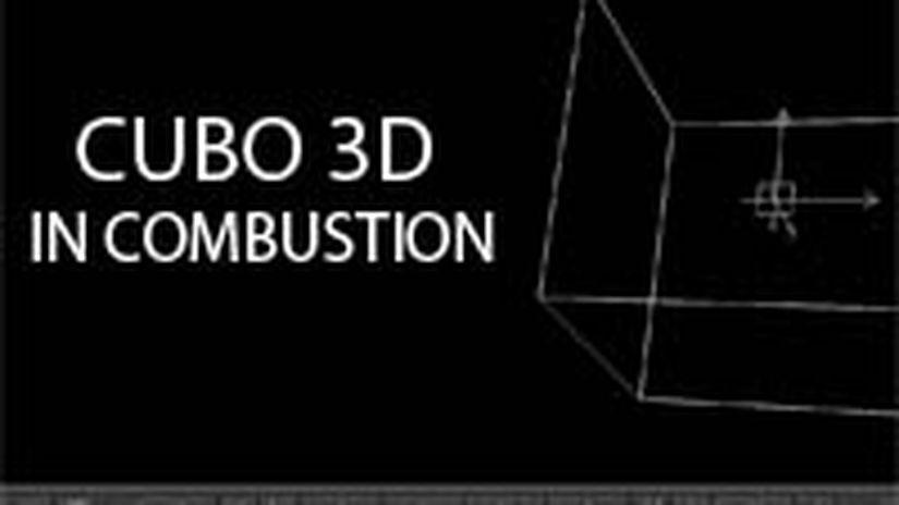 Combustion_cubo_3d