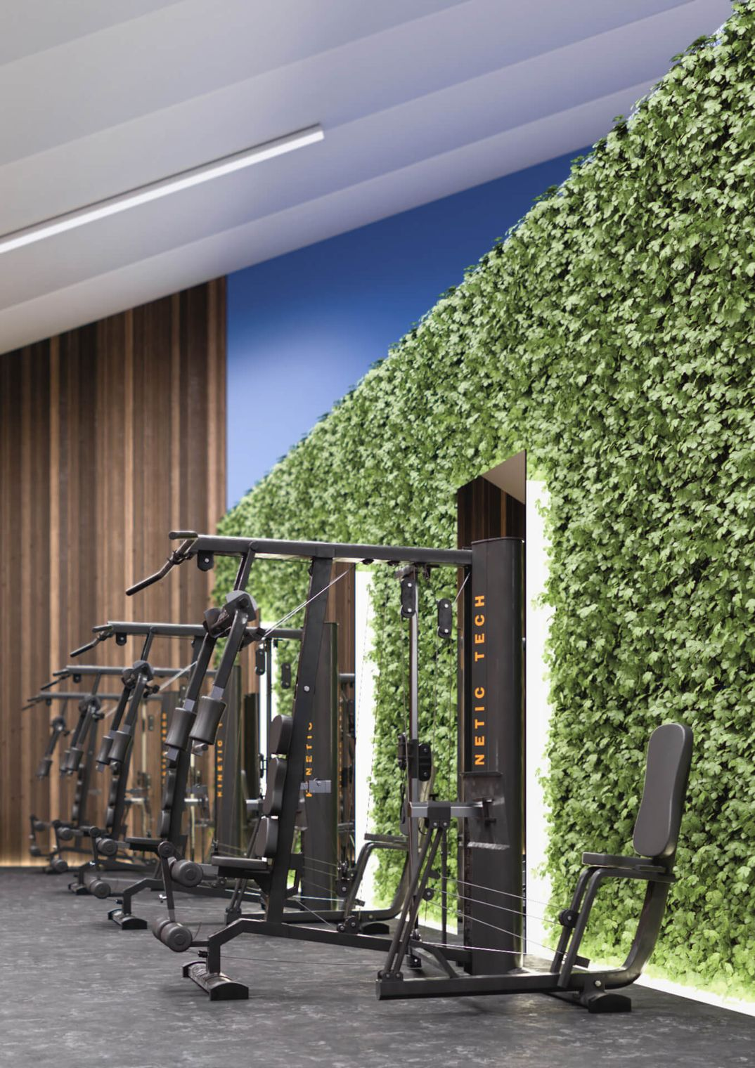 Fitness Center - Interior Design