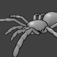 tarantula mesh obj