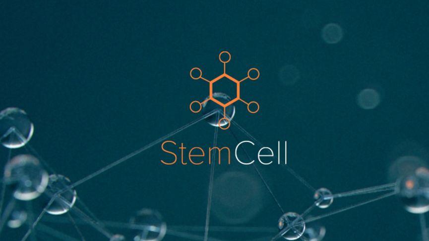Turbosquid StemCell: convertire automaticamente la scena 3D nei formati più diffusi