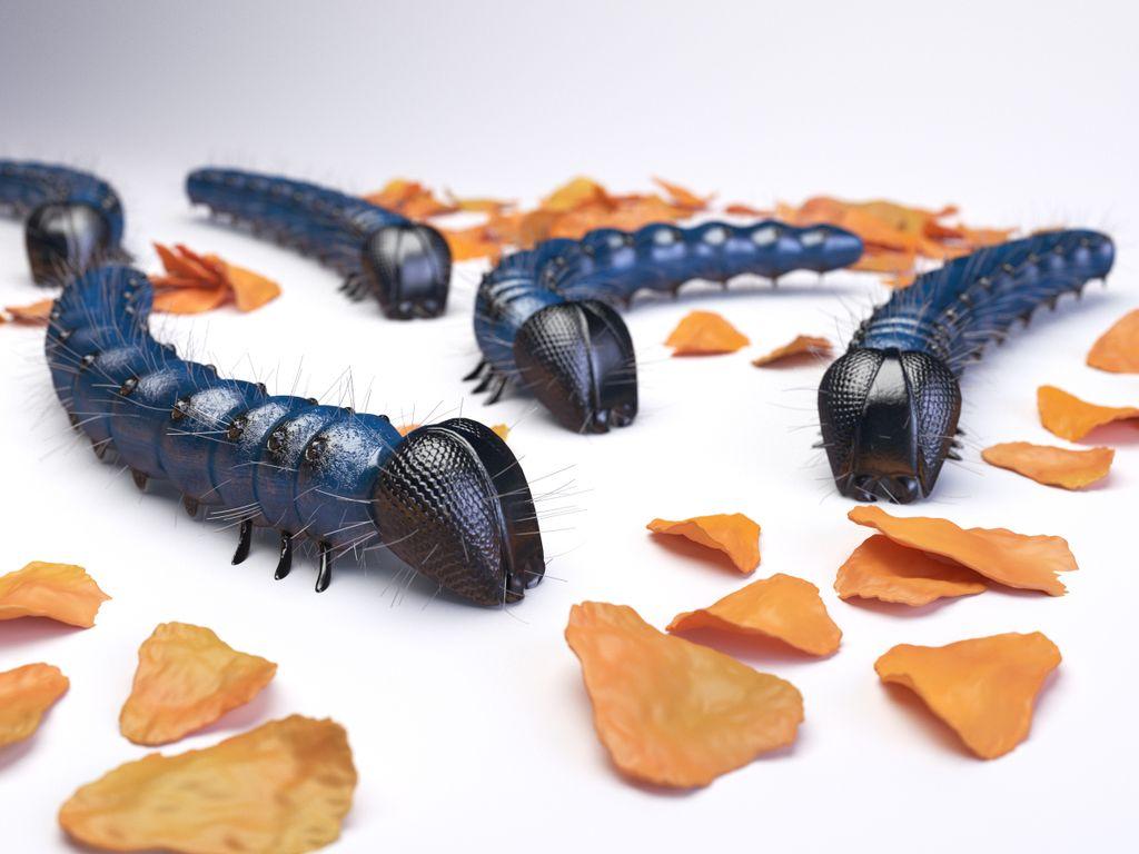 Caterpillars corn flakes