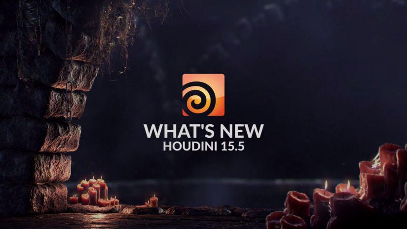 Houdini 15.5