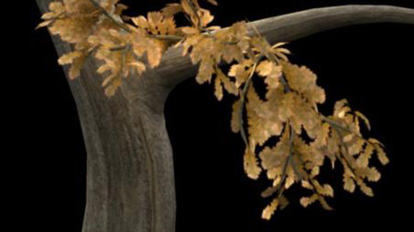 Dynamics Foliage Con Maya Hair System