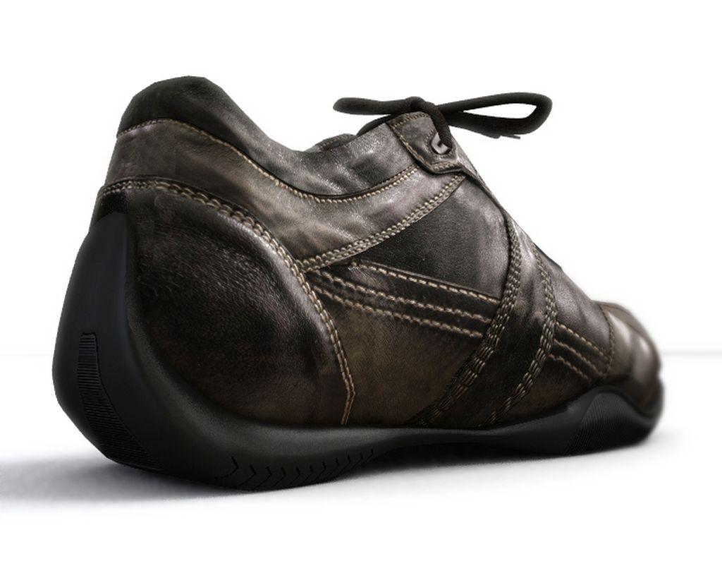 scarpa_posteriore.jpg
