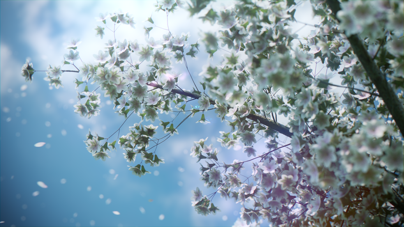 5 Free Blossoming Cherry Tree Models
