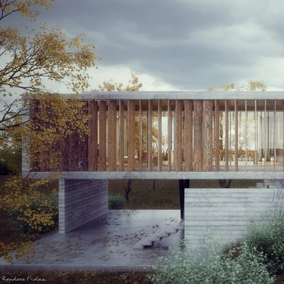 Concrete Villa