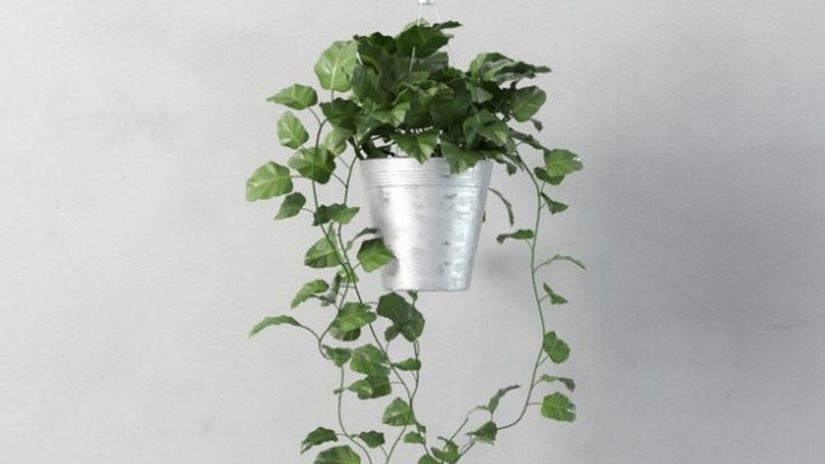 Modellare una pianta realistica con 3ds Max